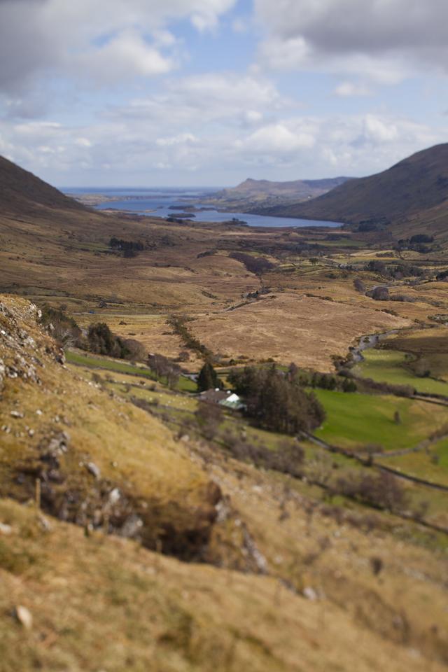 FEAST Connemara Hill Lamb_43